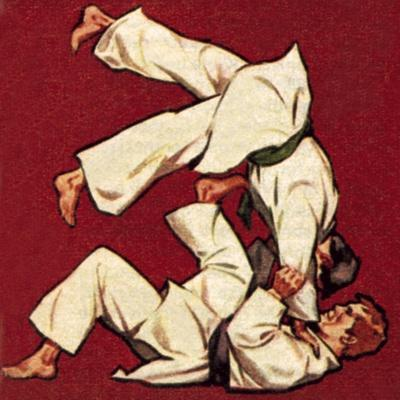 https://imgc.artprintimages.com/img/print/judo_u-l-pcj08l0.jpg?p=0