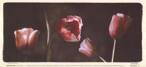 Illuminating Tulips I by Judy Mandolf