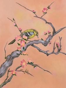 Asian Bird Illustration I by Judy Mastrangelo