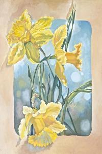 Daffodils by Judy Mastrangelo