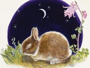 Sleeping Bunny by Judy Mastrangelo