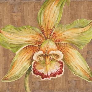 Aloha Beauty I by Judy Shelby