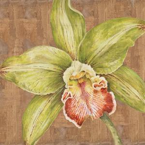 Aloha Beauty II by Judy Shelby