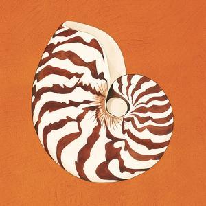 Cayman Quartet C by Judy Shelby