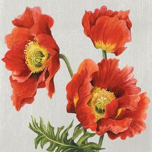 Poppies on Silk by Judy Shelby