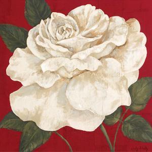 Rosa Blanca Grande II by Judy Shelby