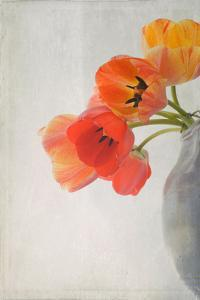 Red Tulips II by Judy Stalus