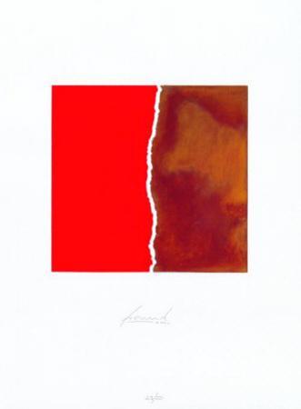 Zerrissen Rot