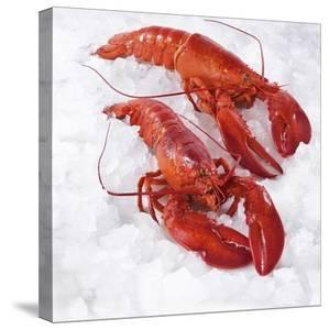 Two Cooked Lobsters on Ice by Jürgen Holz