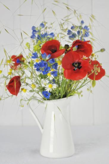Jug with Wildflowers-Cora Niele-Photographic Print
