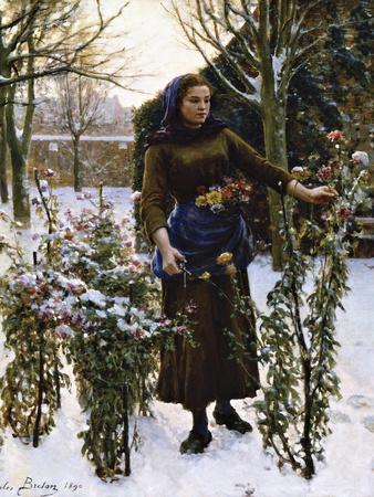 Last Flowers, 1890