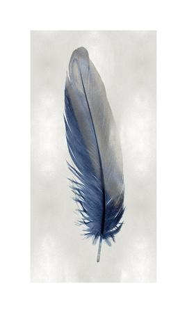 Blue Feather on Silver I