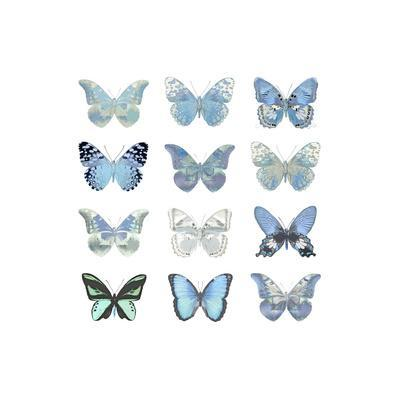 Butterfly Study in Blue I