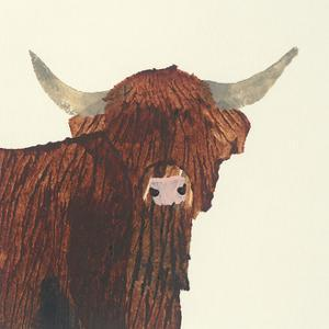 Highland Cow by Julia Burns