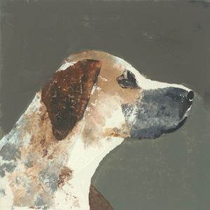 Humphrey by Julia Burns