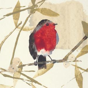 Robin by Julia Burns