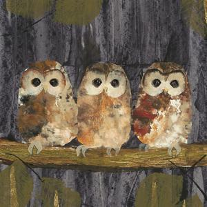 Three Tawny Owls by Julia Burns
