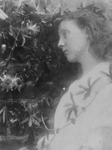 Illustration for the Poem 'Maud' by Alfred, Lord Tennyson, 1865 (Albumen Print) by Julia Margaret Cameron