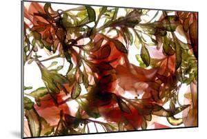 Hibiscus Coleus Array, 2009 by Julia McLemore