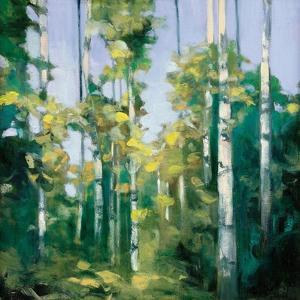 Birches by Julia Purinton