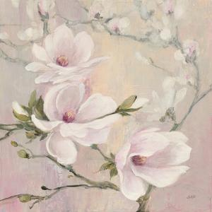 Beautiful Magnolias Artwork For Sale Paintings And Prints Artcom