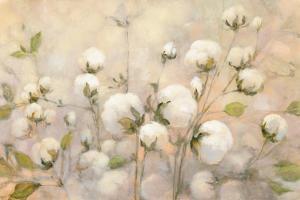 Cotton Field by Julia Purinton