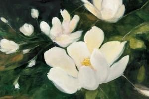 Magnolia Blooms Crop No Petal by Julia Purinton