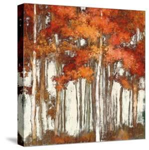 October Woods Light by Julia Purinton