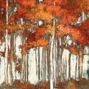 October Woods Light by Julia Purinton