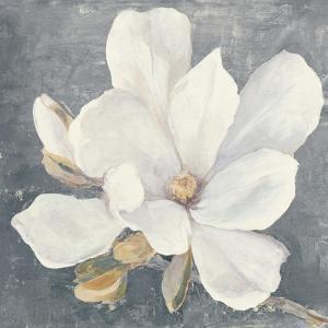 Serene Magnolia Gray by Julia Purinton