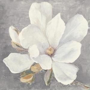 Serene Magnolia Light Gray by Julia Purinton