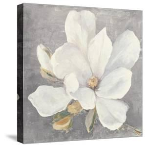Serene Magnolia Light Gray by Julia Purinton