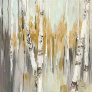 Silver Birch I by Julia Purinton
