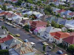 Aerial View of Wooden Villas, Corrugated Iron Roofs, Suburban Street, Auckland by Julia Thorne