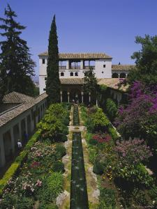 Gardens of the Generalife, the Alhambra, Granada, Andalucia (Andalusia), Spain, Europe by Julia Thorne