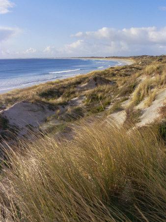 Northern Beach, Chatham Islands Islands