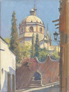 San Miguel Allende, 2005 by Julian Barrow