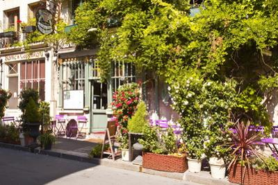 A Cafe in the Backstreets of Ile De La Cite, Paris, France, Europe by Julian Elliott