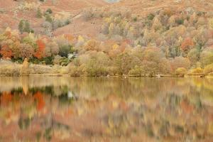 Autumn Colours Reflected in Grasmere Lake in the Lake District National Park by Julian Elliott