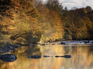 Beautiful Autumn Colours Reflecting in the River Creuse, a Favourite Area of the River of the Artis by Julian Elliott