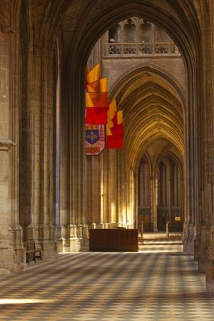 Looking Down an Aisle in Cathedrale Sainte Croix D'Orleans (Cathedral of Orleans), Loiret, France by Julian Elliott