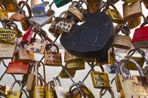 Love Locks on the Pont Des Arts in Paris, France, Europe by Julian Elliott