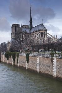 Notre Dame De Paris Cathedral, Paris, France, Europe by Julian Elliott