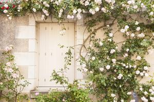 Roses Cover a House in the Village of Chedigny, Indre-Et-Loire, Centre, France, Europe by Julian Elliott