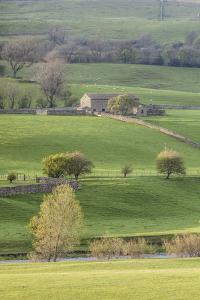 Stone barn in the Yorkshire Dales National Park, Yorkshire, England, United Kingdom, Europe by Julian Elliott