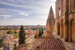 The Cathedral in Salamanca, UNESCO World Heritage Site, Castile and Leon, Spain, Europe by Julian Elliott
