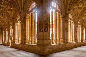 The Cloister of Convento De San Esteban in Salamanca, Castile and Leon, Spain, Europe by Julian Elliott