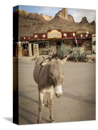 Route 66, Oatman, Arizona, USA