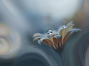 Infinite longing... by Juliana Nan