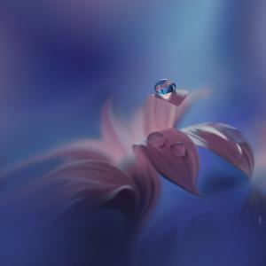 Purple Wind... by Juliana Nan
